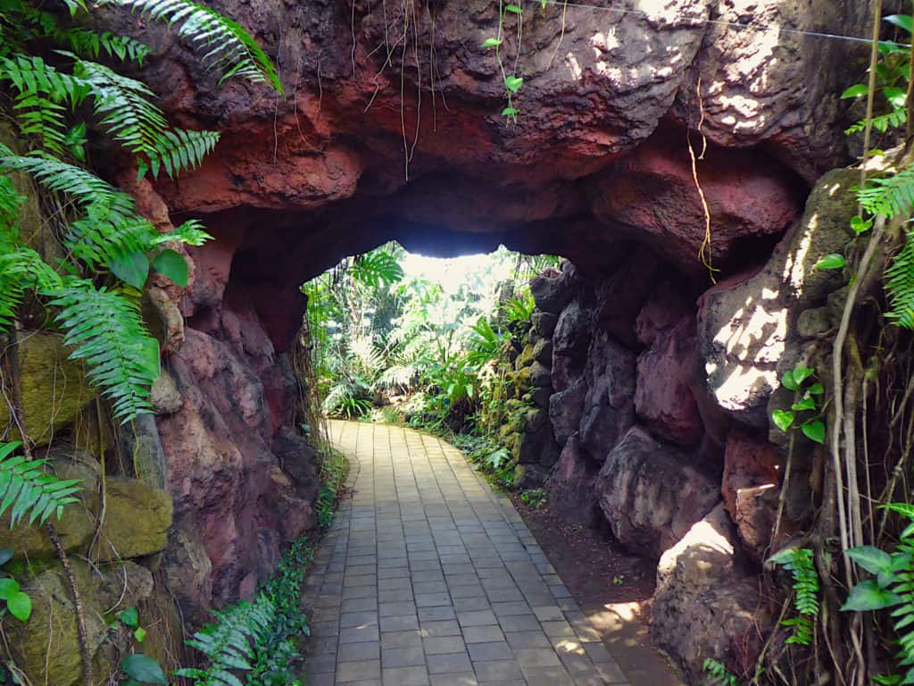 Cave Tropical Dome