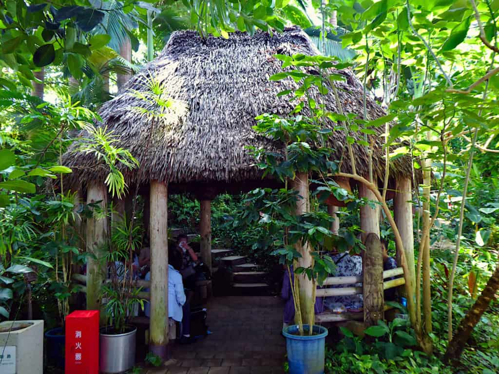 Hut Tropical Greenhouse Dome