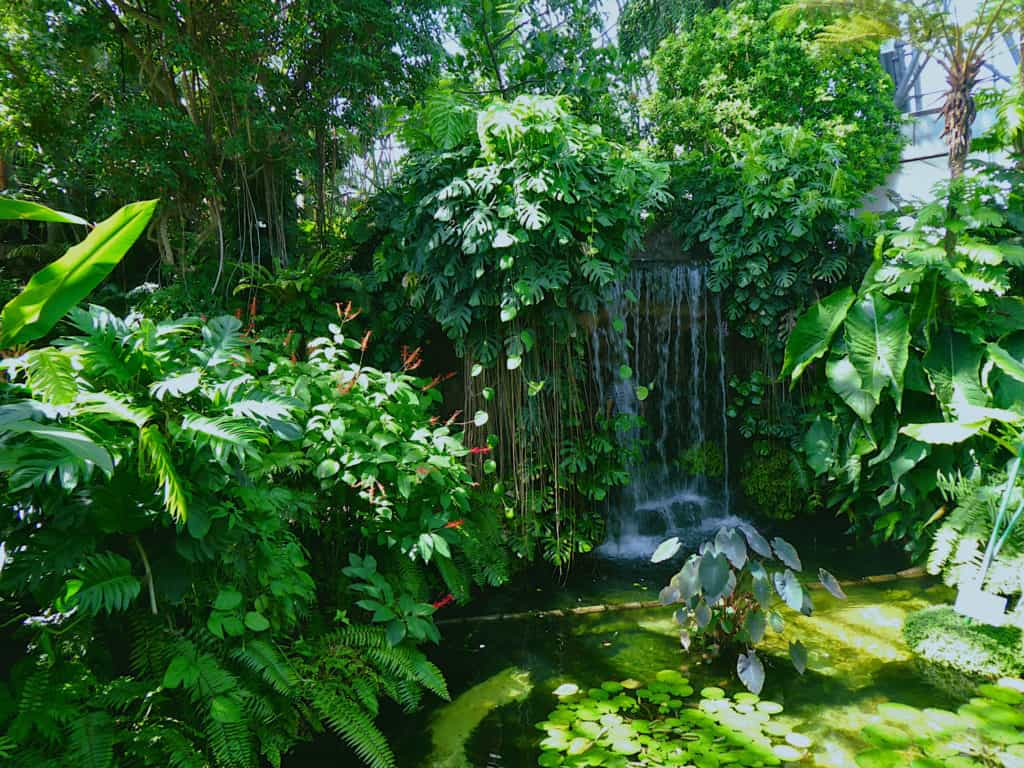 Tropical Domes Waterfall